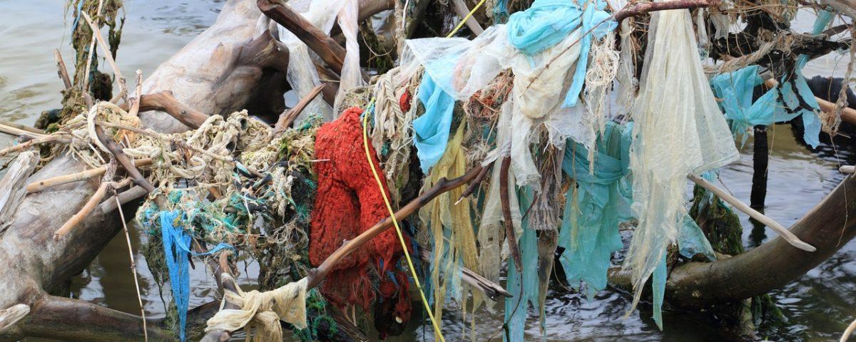 inquinamento da micro e macro plastiche in mare laboratori didattici scuole
